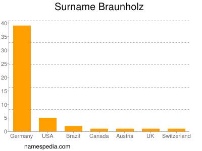 Surname Braunholz