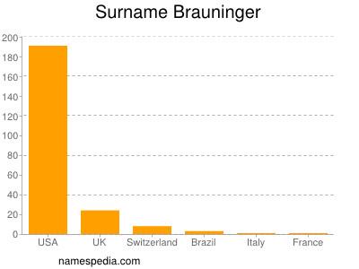 Surname Brauninger