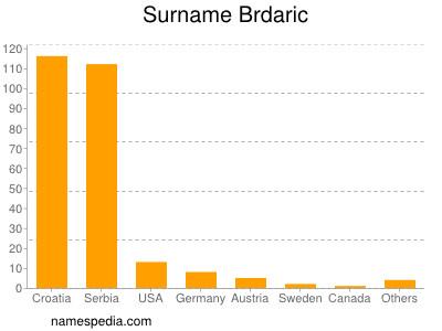 Surname Brdaric