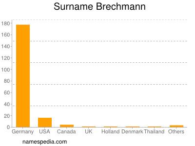 Surname Brechmann