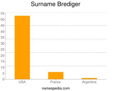 Surname Brediger