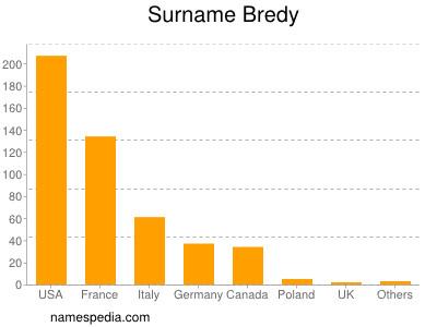 Surname Bredy