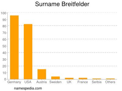 Surname Breitfelder