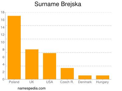Surname Brejska