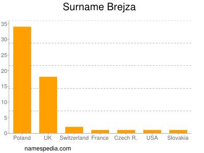Surname Brejza