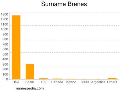 Surname Brenes
