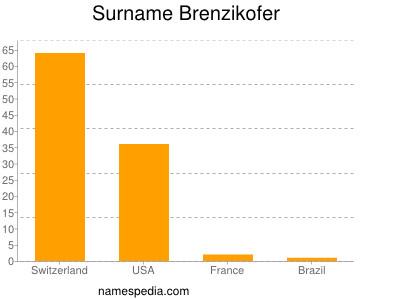 Surname Brenzikofer