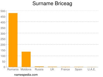 Surname Briceag