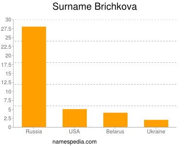 Surname Brichkova
