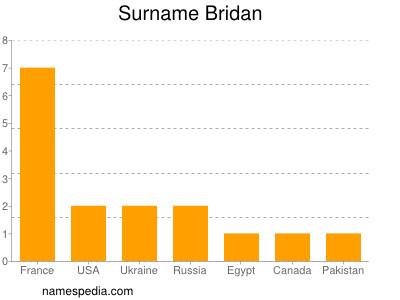 Surname Bridan