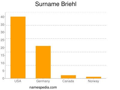 Surname Briehl