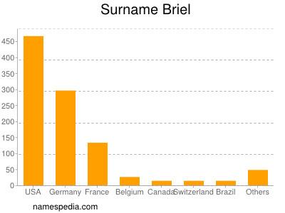 Surname Briel