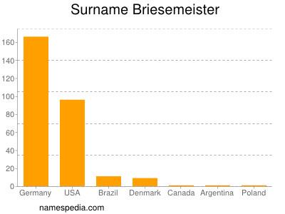 Surname Briesemeister