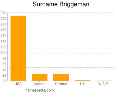Surname Briggeman