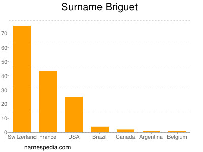 Surname Briguet