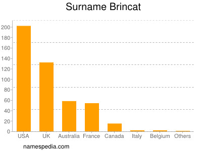 Surname Brincat