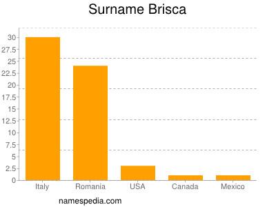 Surname Brisca
