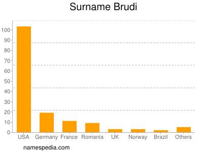 Surname Brudi