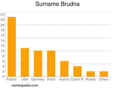 Surname Brudna