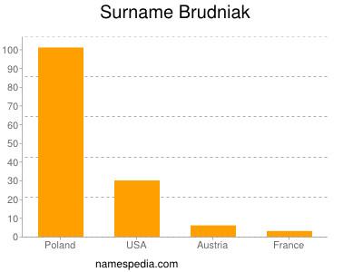 Surname Brudniak