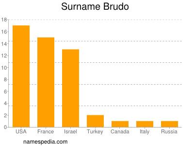 Surname Brudo