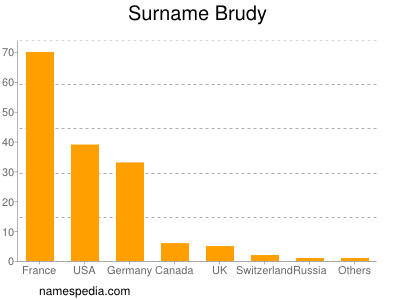 Surname Brudy