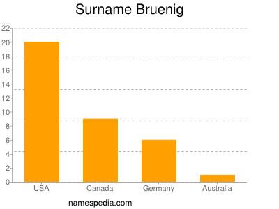 Surname Bruenig