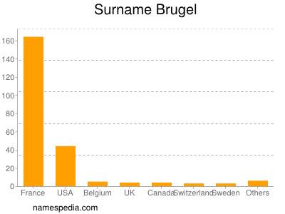 Surname Brugel
