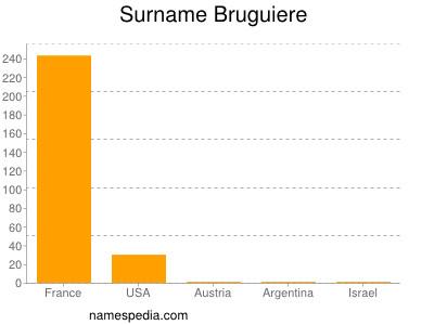 Surname Bruguiere