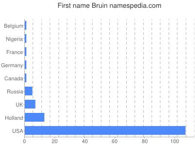 Given name Bruin