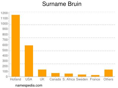 Surname Bruin
