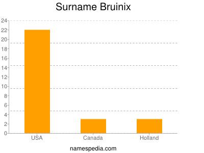 Surname Bruinix