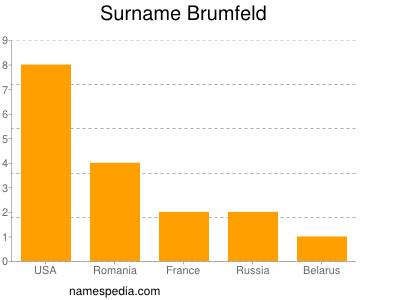 Surname Brumfeld