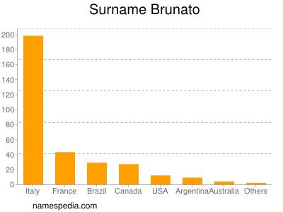Surname Brunato