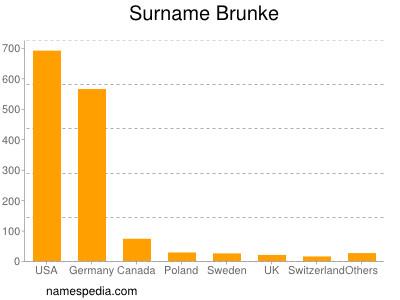 Surname Brunke