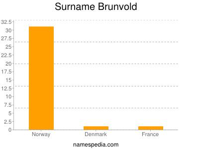 Surname Brunvold