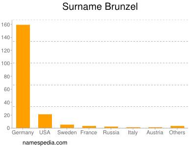 Surname Brunzel