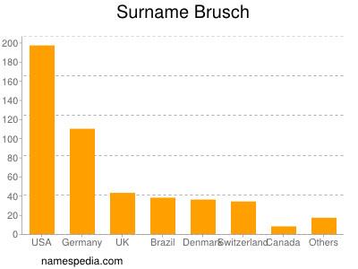 Surname Brusch