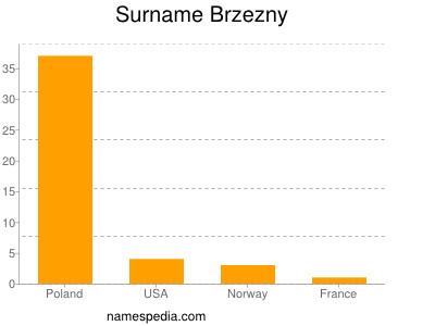 Surname Brzezny