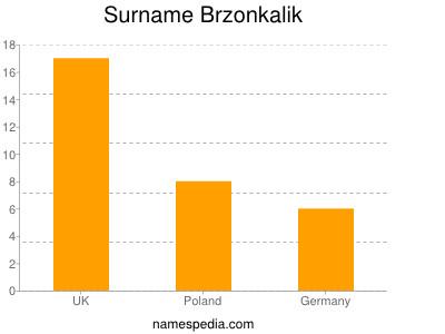 Surname Brzonkalik