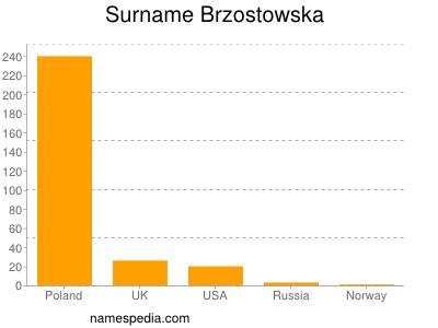 Surname Brzostowska