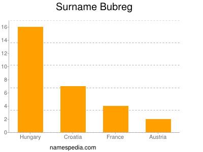Surname Bubreg