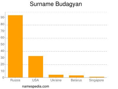 Surname Budagyan