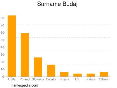 Surname Budaj
