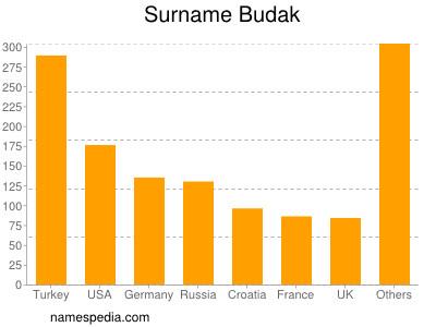 Surname Budak