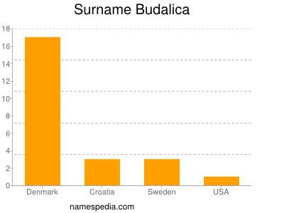 Surname Budalica