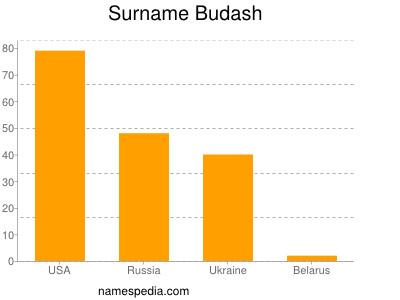Surname Budash