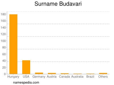 Surname Budavari