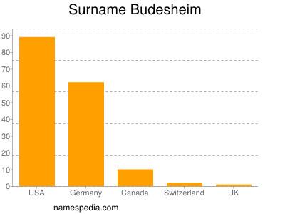 Surname Budesheim