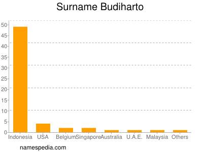 Surname Budiharto